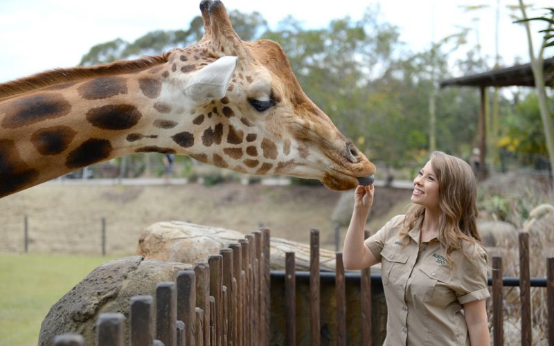 FEED A GIRAFFE  ON A EXOTIC VIP CADDIE TOUR