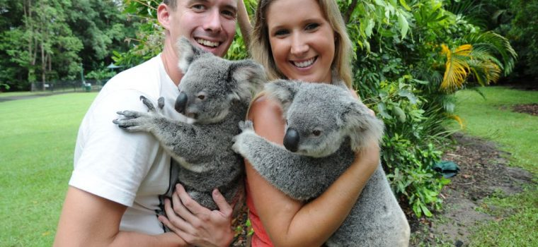 CUDDLE A KOALA & RECEIVE A COMPLIMENTARY PHOTO
