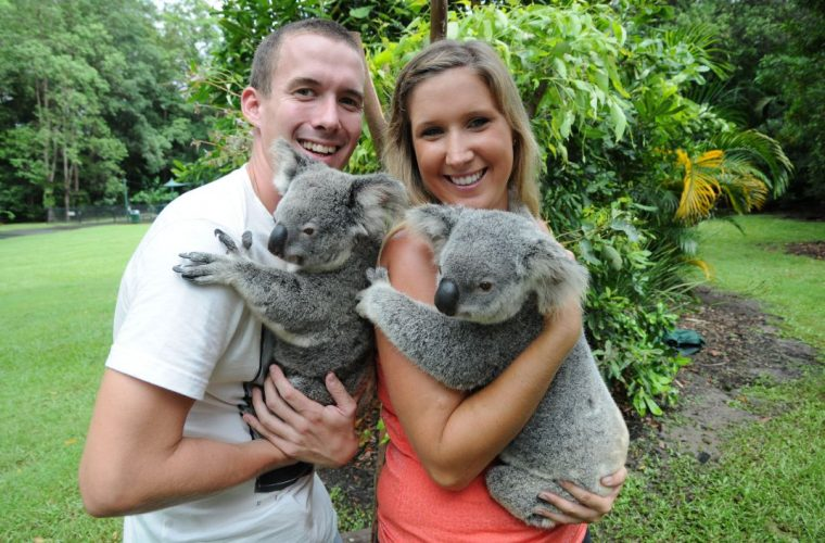 CUDDLE A KOALA & RECEIVE A COMPLIMENTARY PHOTO